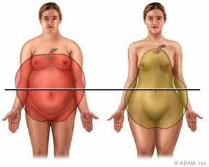 Les femmes aux corps en forme de poire sont prédisposées à perdre la mémoire