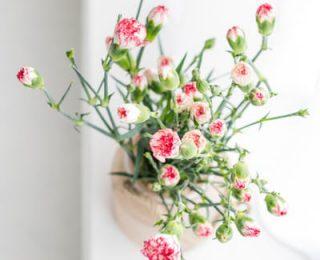 Comment garder des fleurs coupées plus longtemps