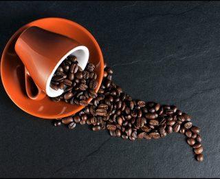 Tout sur la conservation du café