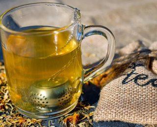Comment est fabriqué le thé blanc ?