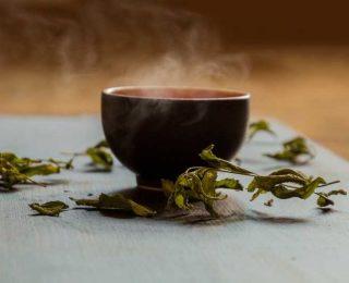 Qu'est-ce que le thé vert Matcha ?