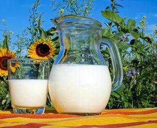 Devriez-vous ou non ajouter du lait à votre thé ?