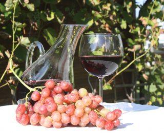 Quelle est la meilleure température de service pour le vin ?