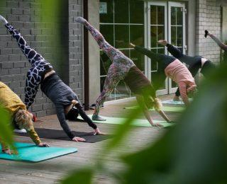 Le yoga pour améliorer la digestion